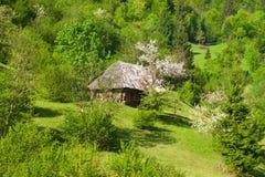 Casa del villaggio Immagine Stock