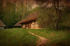 Casa del villaggio nell'ambiente della foresta, immagine tonificata artistica Immagini Stock Libere da Diritti