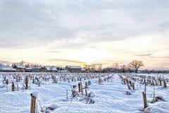 Casa del villaggio rurale nell'orario invernale accanto al campo di mais Fotografie Stock Libere da Diritti