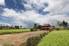 Casa del villaggio rurale nella risaia Fotografie Stock Libere da Diritti