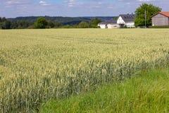 casa del villaggio rurale sull'orizzonte Fotografie Stock