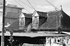 Casa del vintage Imagen de archivo libre de regalías