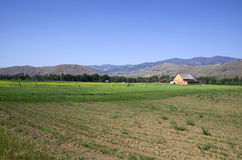 Casa dell'azienda agricola del deserto Immagine Stock Libera da Diritti