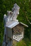 Casa dell'insetto Fotografia Stock