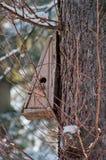 Casa dell'uccello. Allevamento della cabina sull'albero Fotografia Stock