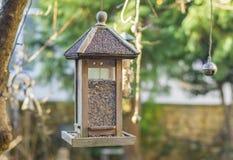 Casa dell'uccello con l'alimentazione dell'uccello Immagini Stock