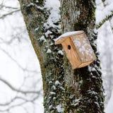 Casa dell'uccello in inverno, appendente sull'albero fotografia stock libera da diritti
