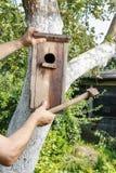 Casa dell'uccello nel giardino Fotografia Stock Libera da Diritti