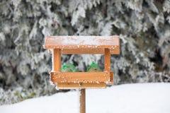 Casa dell'uccello o alimentatore dell'uccello in giardino di inverno Fotografia Stock