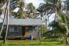 Casa della cabina con le palme Nicaragua immagini stock libere da diritti