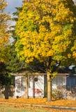 Casa della famiglia ed albero variopinto nella caduta fotografia stock