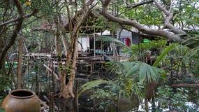 Casa della giungla Immagine Stock Libera da Diritti