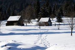 Casa della neve Immagini Stock Libere da Diritti