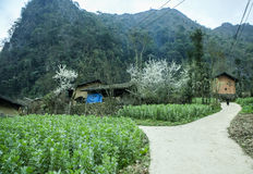 Casa delle minoranze etniche Fotografia Stock