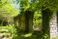 Casa destruída em Abakhasia Foto de Stock