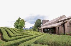 Casa di Brown e giardino e cielo blu moderni fotografie stock libere da diritti
