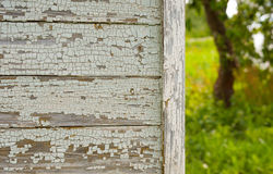 Casa di campagna del primo piano nel giardino del meleto di estate fotografia stock