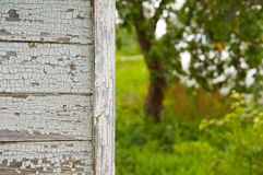 Casa di campagna del primo piano nel giardino del meleto di estate immagini stock libere da diritti