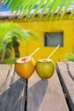 Casa di colore giallo di tropica del cocktail della paglia delle noci di cocco Fotografia Stock Libera da Diritti