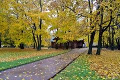 Casa di legno con il fogliame di caduta ed alberi gialli dalla strada in autunno fotografie stock libere da diritti