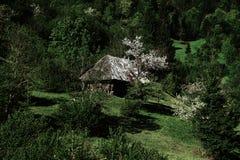 Casa di legno del villaggio Immagini Stock