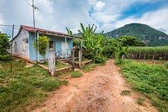 Casa di legno dell'agricoltore in villaggio Vinales in Cuba Fotografie Stock Libere da Diritti