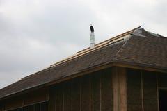 Casa di legno fatta di paglia Immagine Stock