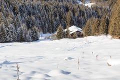Casa di legno nelle montagne con neve ed alberi nell'inverno nelle alpi di Stubai Fotografia Stock