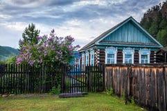 Casa di legno russa tradizionale del paese anziano con il recinto ed il lillà stupefacente Fotografie Stock Libere da Diritti