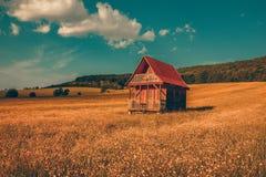 Casa di legno sola del paesaggio fantastico nelle montagne/colline con la foresta in collina del prato del fondo con i gradi gial immagini stock