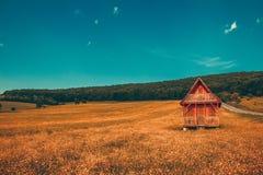 Casa di legno sola del paesaggio fantastico nelle montagne/colline con la foresta in collina del prato del fondo con i gradi gial fotografia stock