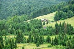 Casa di legno tradizionale della montagna sul campo verde Immagini Stock Libere da Diritti