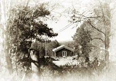 Casa distante dell'azienda agricola della Norvegia nel fondo di seppia di legni Immagine Stock Libera da Diritti