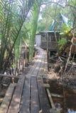 Casa do abandono na selva dos manguezais imagens de stock