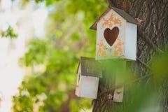Casa do aviário para pássaros Fotos de Stock Royalty Free