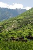 Casa do estilo de Tibet Fotografia de Stock
