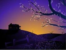 Casa do nascer do sol da mola Imagem de Stock Royalty Free