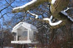 Casa do pássaro - alimentador do pássaro Imagem de Stock