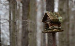 Casa do pássaro da cabana rústica de madeira Fotos de Stock Royalty Free