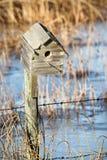 Casa do pássaro durante a mola quando a água for congelada ainda imagens de stock