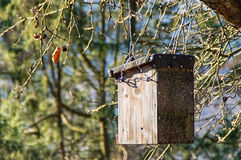 Casa do pássaro em uma árvore Imagem de Stock