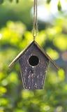 Casa do pássaro nas folhas da luz do sol & do verde do verão Fotos de Stock