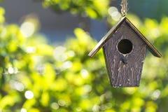 Casa do pássaro nas folhas da luz do sol & do verde do verão Imagens de Stock Royalty Free