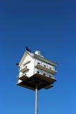 Casa do pássaro no céu Imagem de Stock