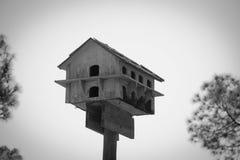 Casa do pássaro no céu Imagens de Stock Royalty Free