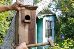 Casa do pássaro no jardim Fotos de Stock Royalty Free