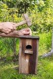 Casa do pássaro no jardim Imagens de Stock Royalty Free