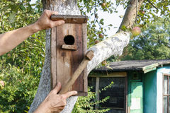 Casa do pássaro no jardim Fotografia de Stock Royalty Free