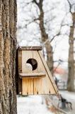 Casa do pássaro que pendura da árvore com o furo da entrada na forma de um círculo imagens de stock