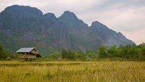 A casa do relógio de madeira no campo vazio do arroz laos vídeos de arquivo
